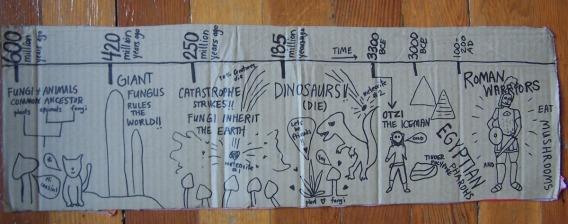 timeline fungi drawing